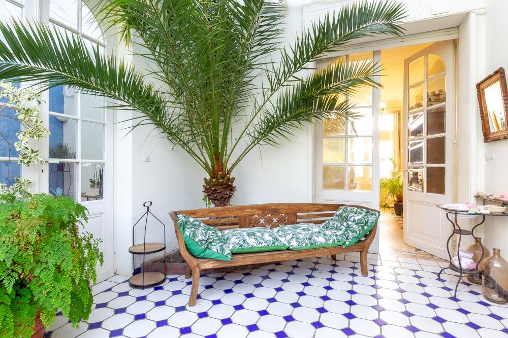 jardin d'hiver canapé bois palmier