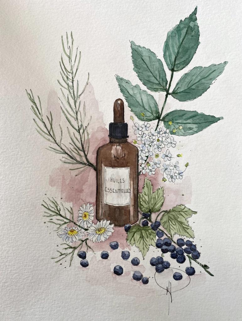 huile essentielle camomille romaine et estragon