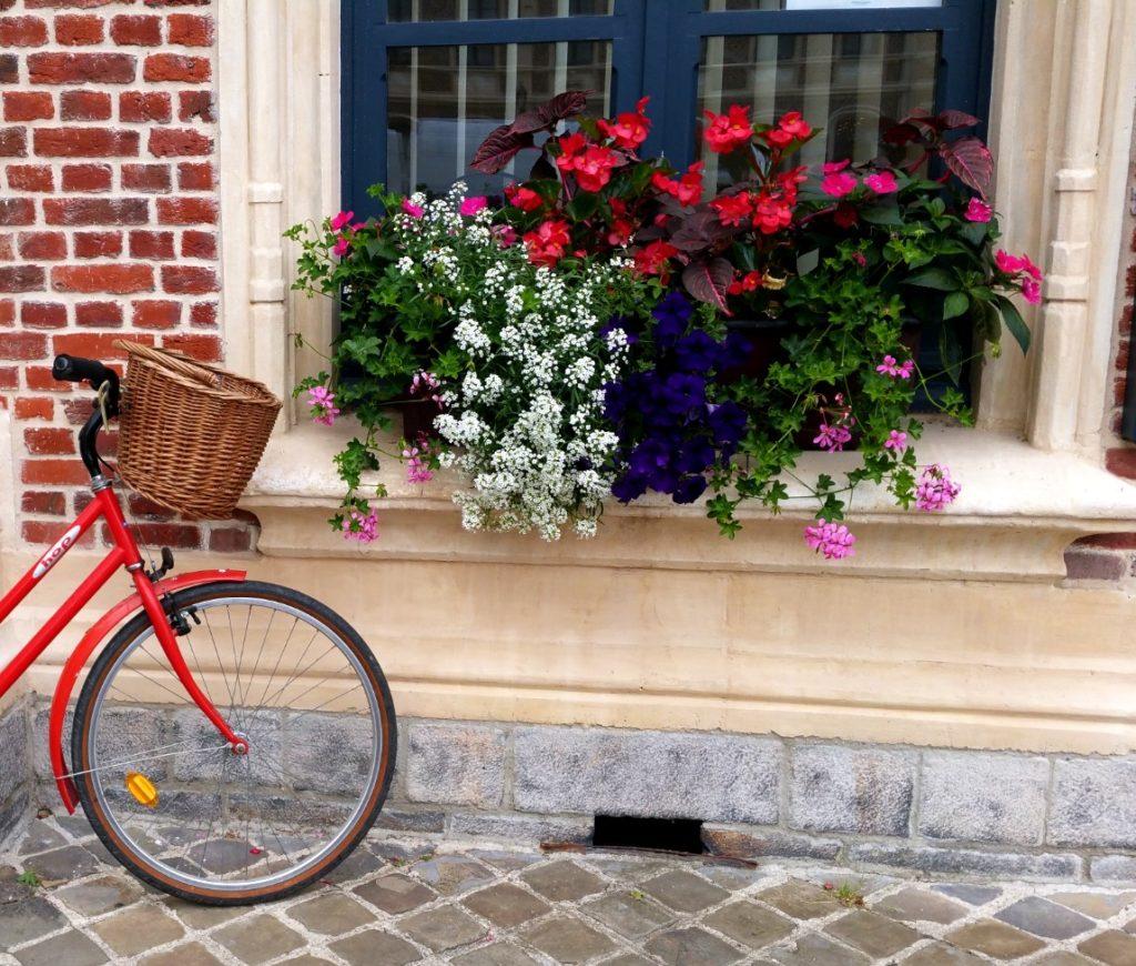 Jardinière géranium vélo rouge