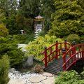 007_1044_Reportage-Le-Jardin-de-Ly-©Teddy-Henin-min-1